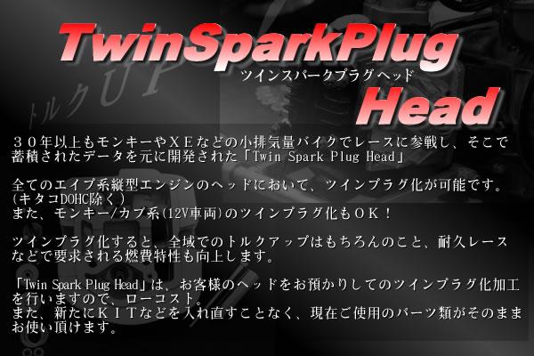 TwinSparkPlugHead